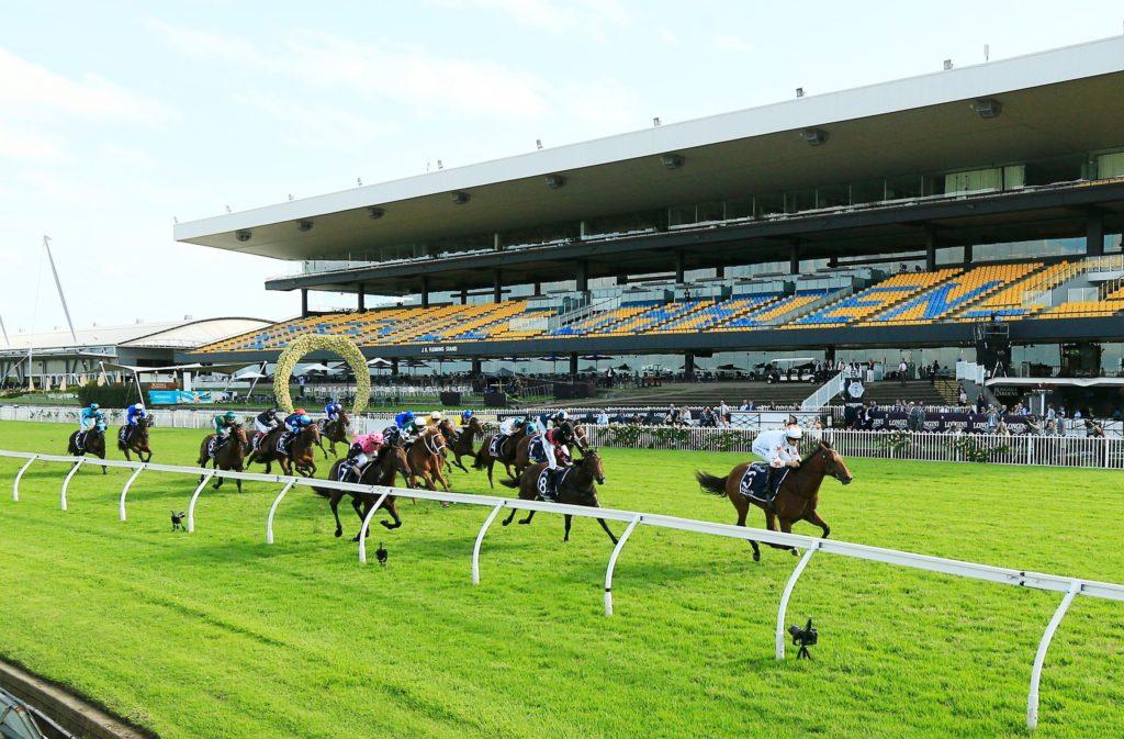 Horse racing - The Field formula